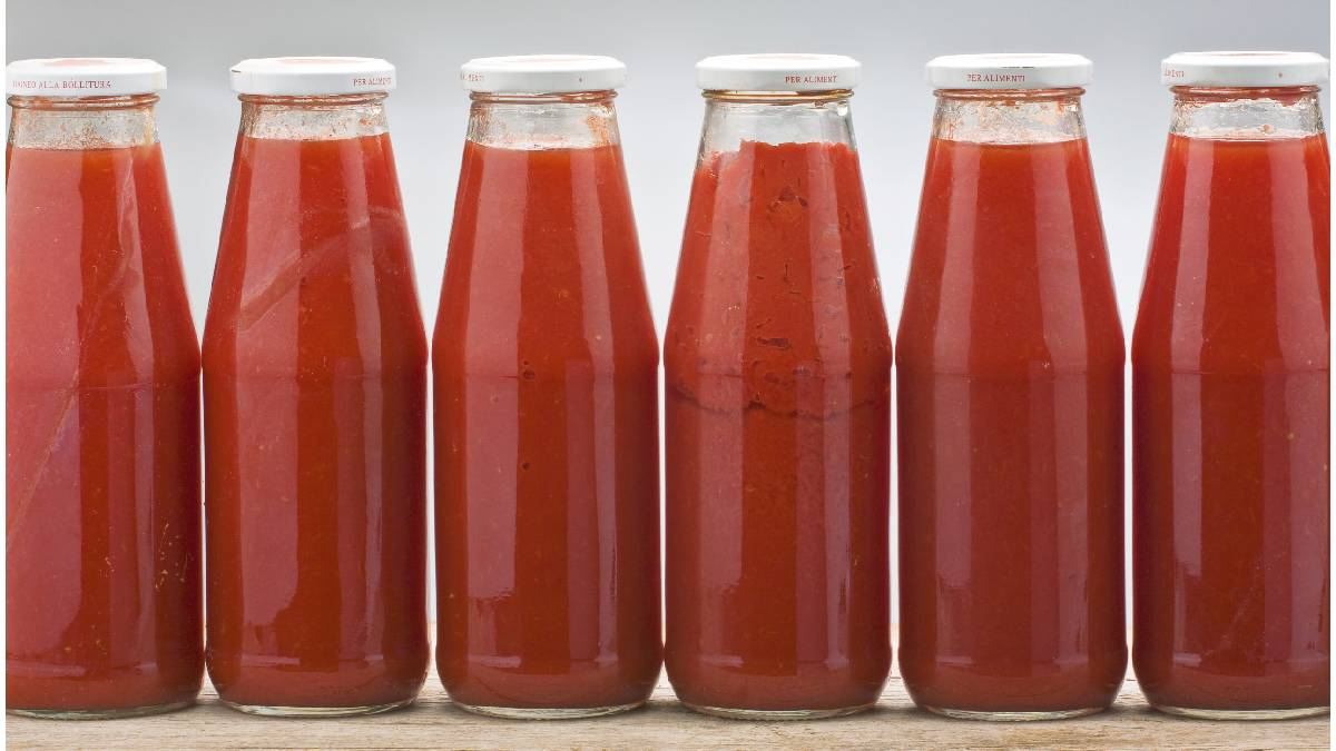 molho tomate italiano