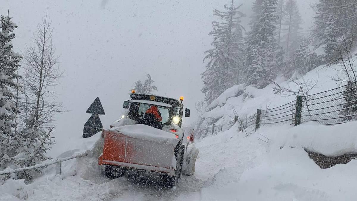 maior neve italia
